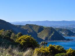 Mountains, New Zealand