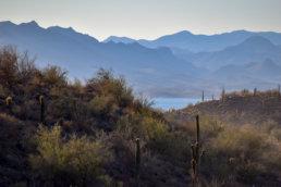 Mountains, Lake, Arizona